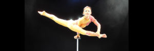 A performer of the Cirque D'Or troupe hold a split-legged position while balancing on one hand. Photo credit: Cirque D'Or